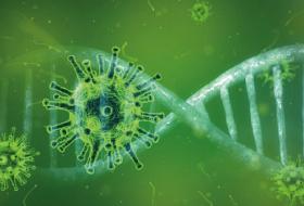 ไวรัสโคโรนาสายพันธุ์ใหม่ 2019 กับดวงตา